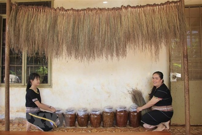 Jrai women prepare ingredients to make rượu cần for Tết. — VNA/VNS Photo Hồng Điệp