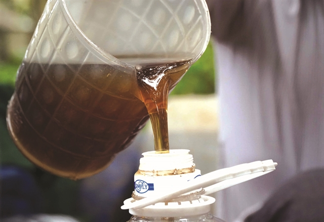 HEALTHY HONEY: Honey from longan flowers is famed for its fragrance and nutritious value. VNA/VNS Photo Phạm Kiên
